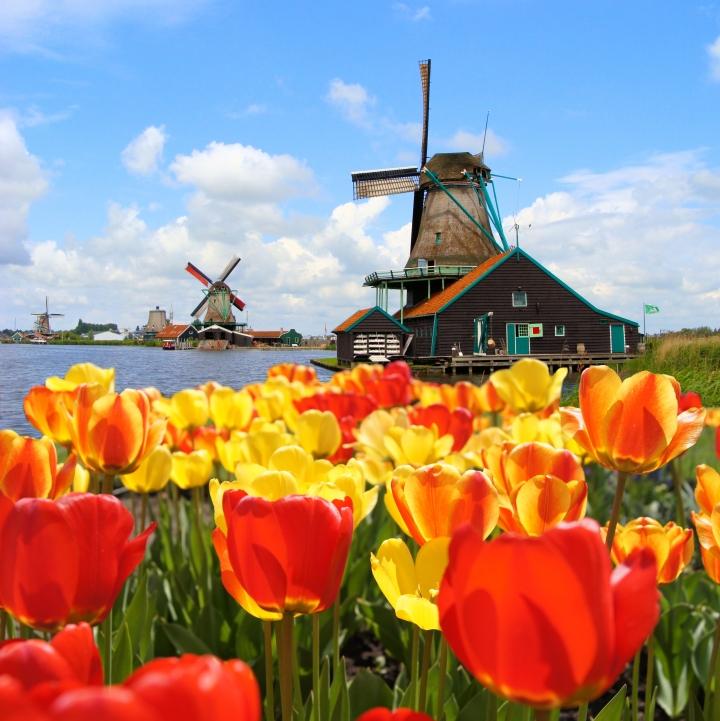 Amsterdam: un viaje que noolvidaré.